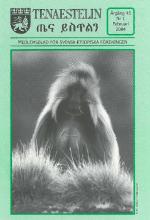 Tenaestelin 2004 nr 1
